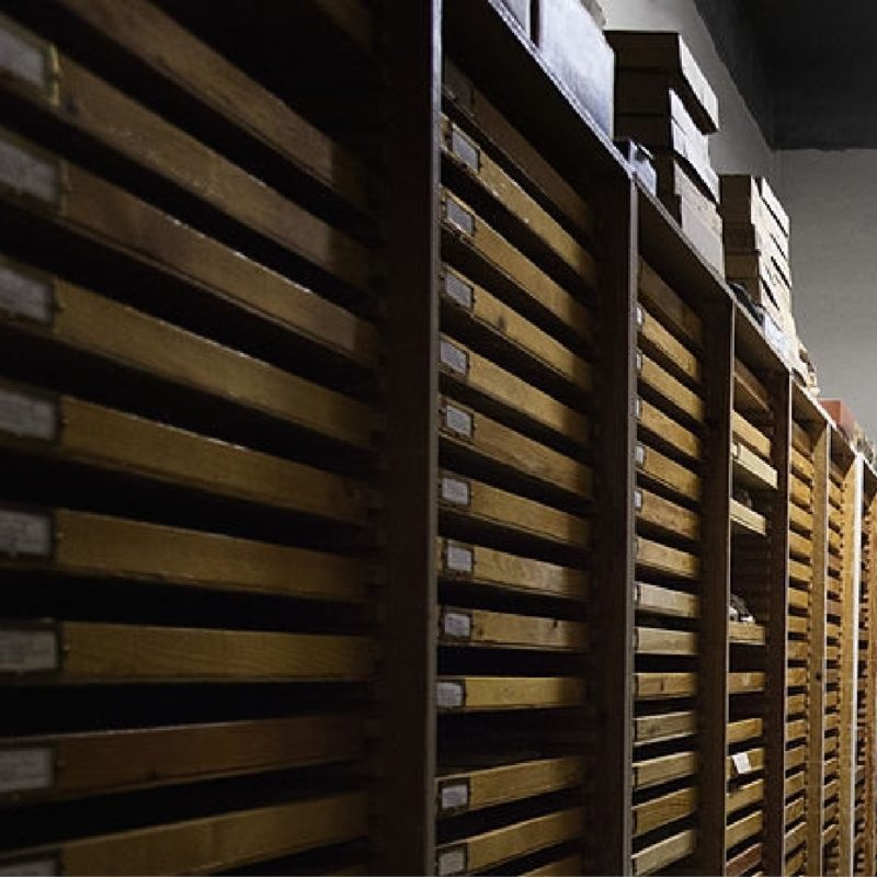Collection Management Services